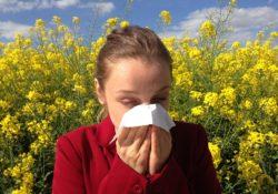 Tipy na alergii