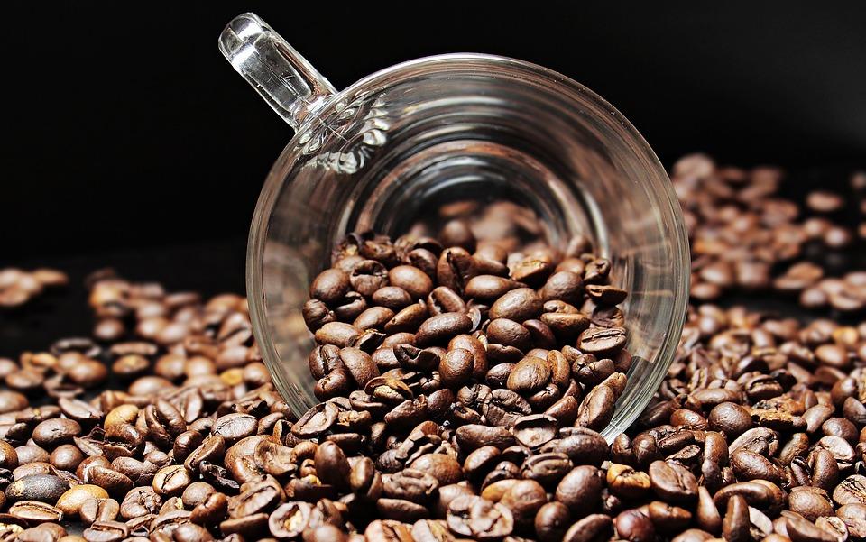 Seznamte se se základními druhy kávy