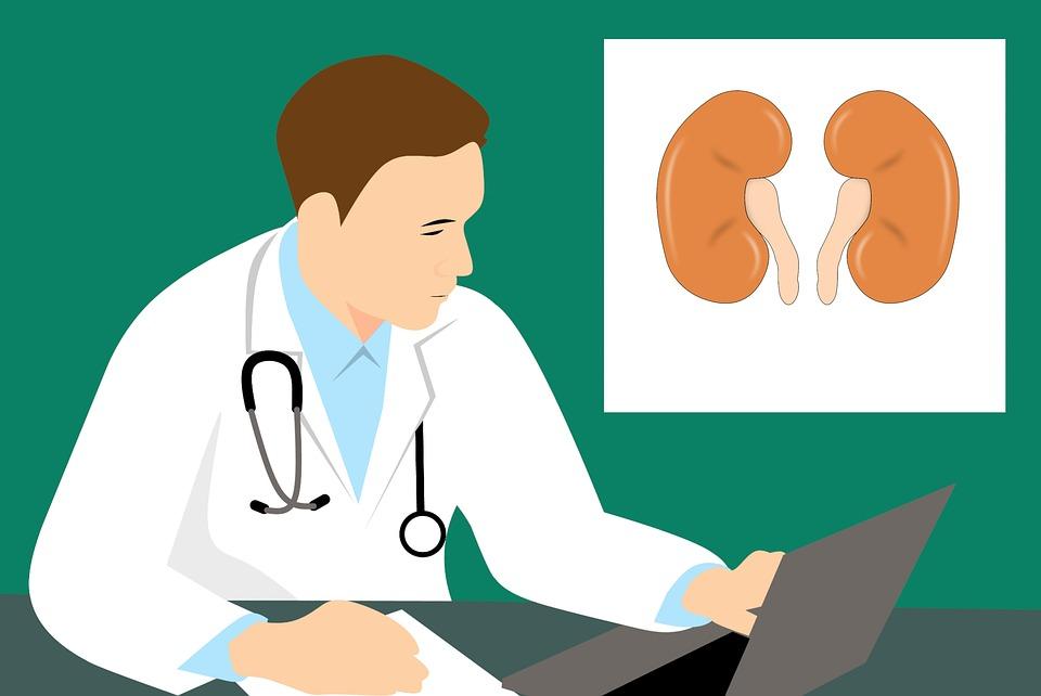 Věci, které děláme a kterými si ničíme ledviny
