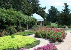 Jak vybudovat bezbariérovou zahradu