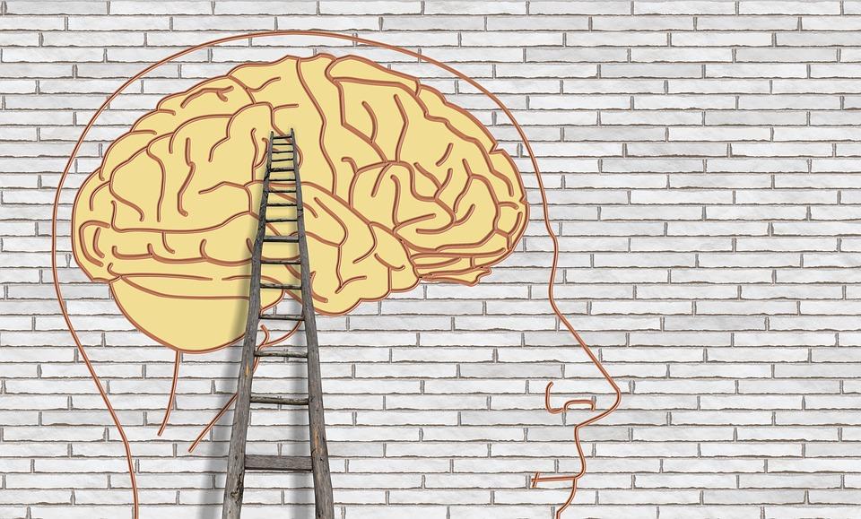 I mozku škodíme denně. Jak a čím?