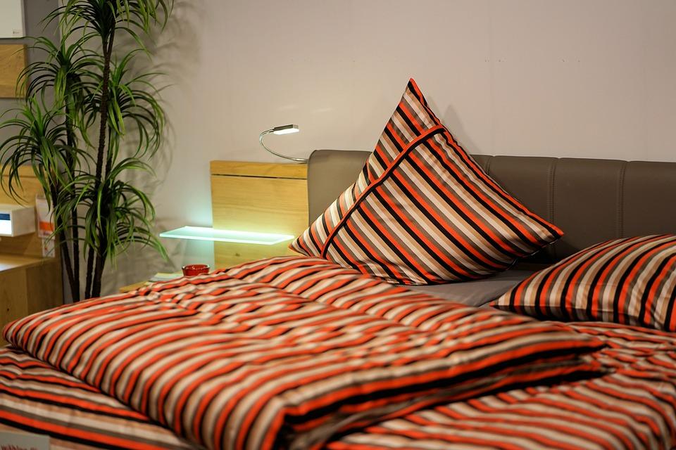 Pokojové rostliny, které zajistí klidný a kvalitní spánek