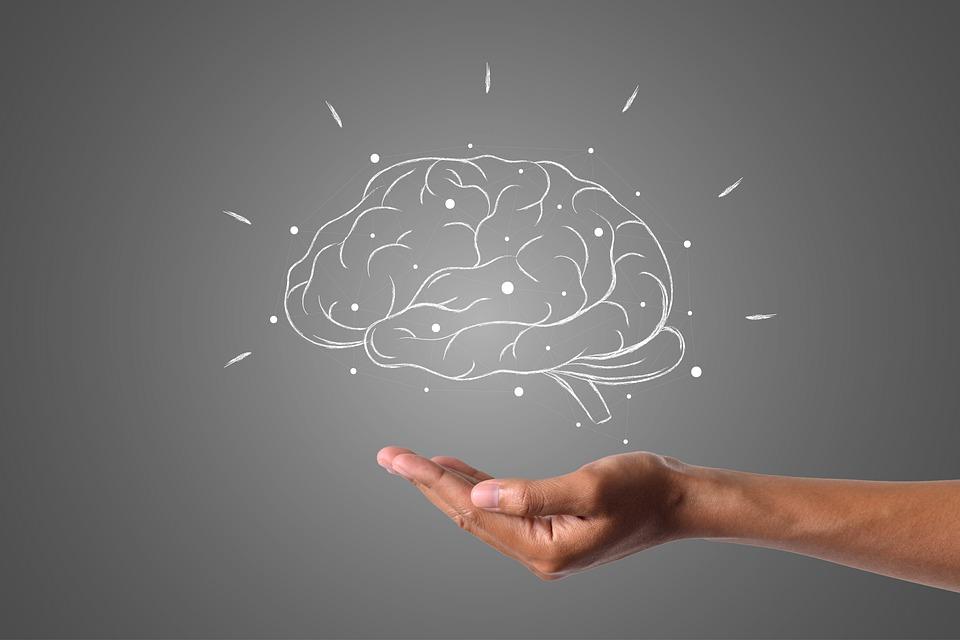 Mýty o mozku, kterým lidé věří a nejsou pravda