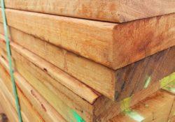 Ze dřeva se staví i veřejné stavby. Mohou mít několik pater